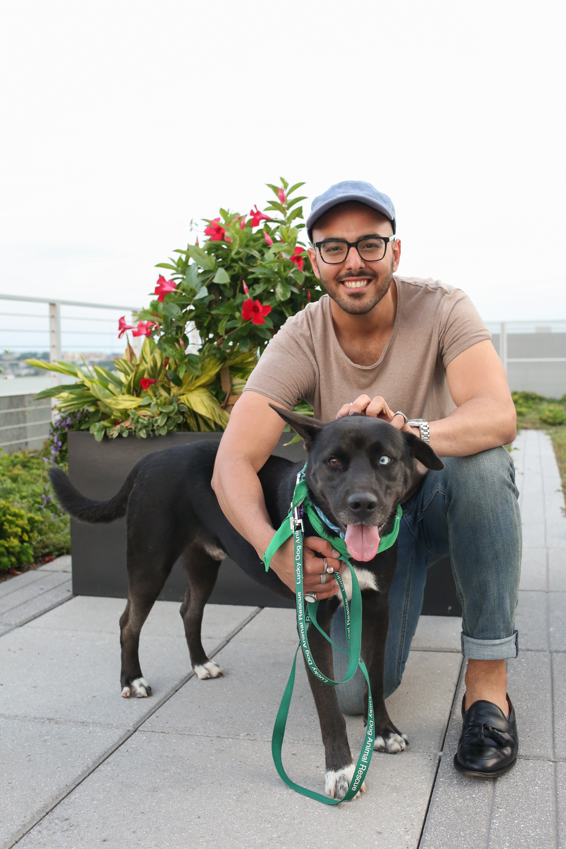 Chris is a 60-pound male who just got to the area from Puerto Rico. Chris was also ADOPTED following this shoot. Congrats Chris! (Image: Amanda Andrade-Rhoades/ DC Refined)