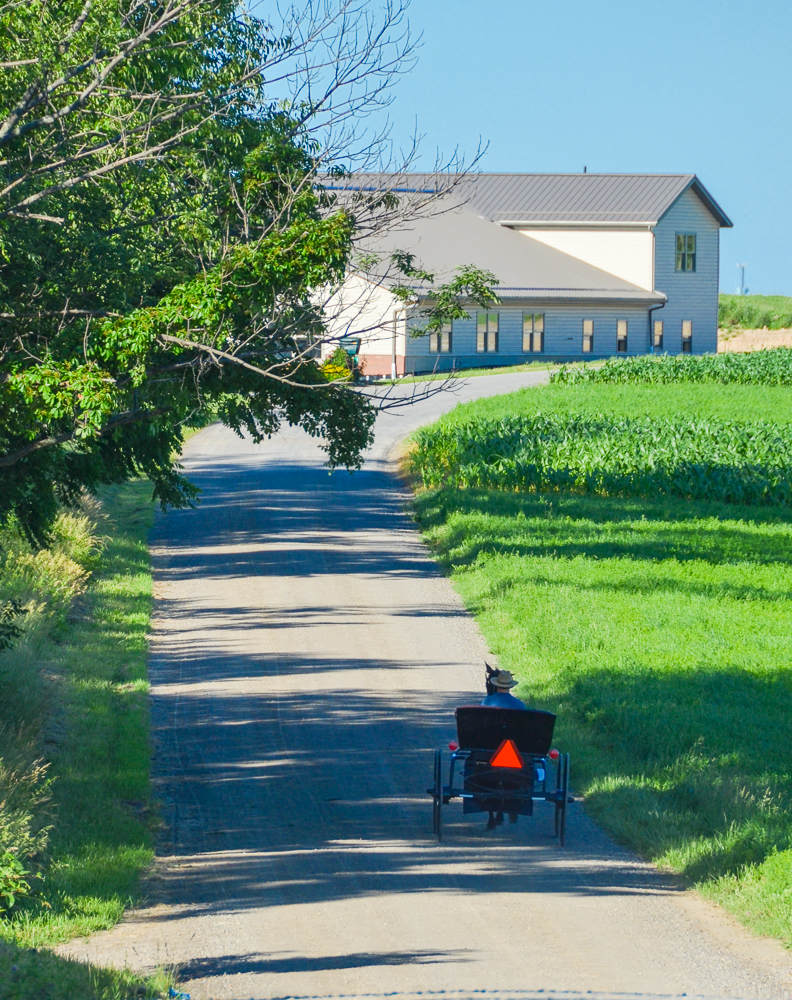 Ohio Amish Country, a picturesque portion of east-central Ohio, is a place where time slows down. Come ready to be restored. [Image: Sherry Lachelle Photography]