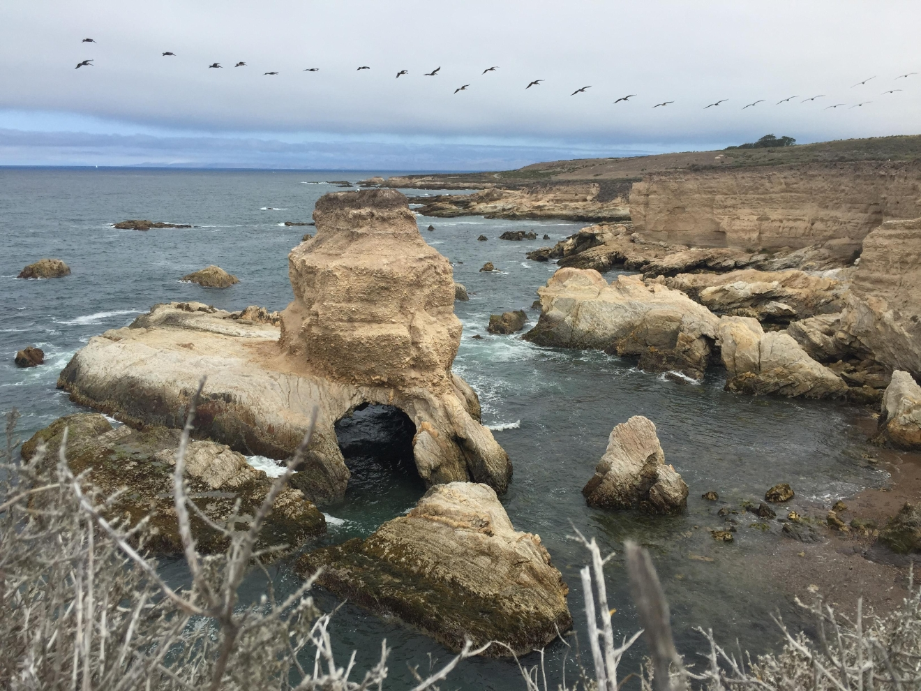 The bluff trail at Montaña de Oro State Park has tide pools and rock inlets at every turn.