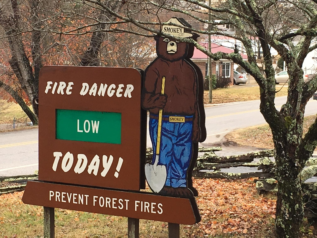 The U.S. Forest Service said wildfires that burned in Western North Carolina cannot be classified as a benefit, but they see some benefits down the road.  (Photo credit: WLOS staff)