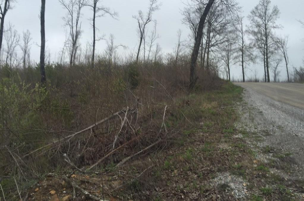 This is where authorities say they found Rogers' body in a barrel, on Valley View Road in Bledsoe County. (Image: WTVC)