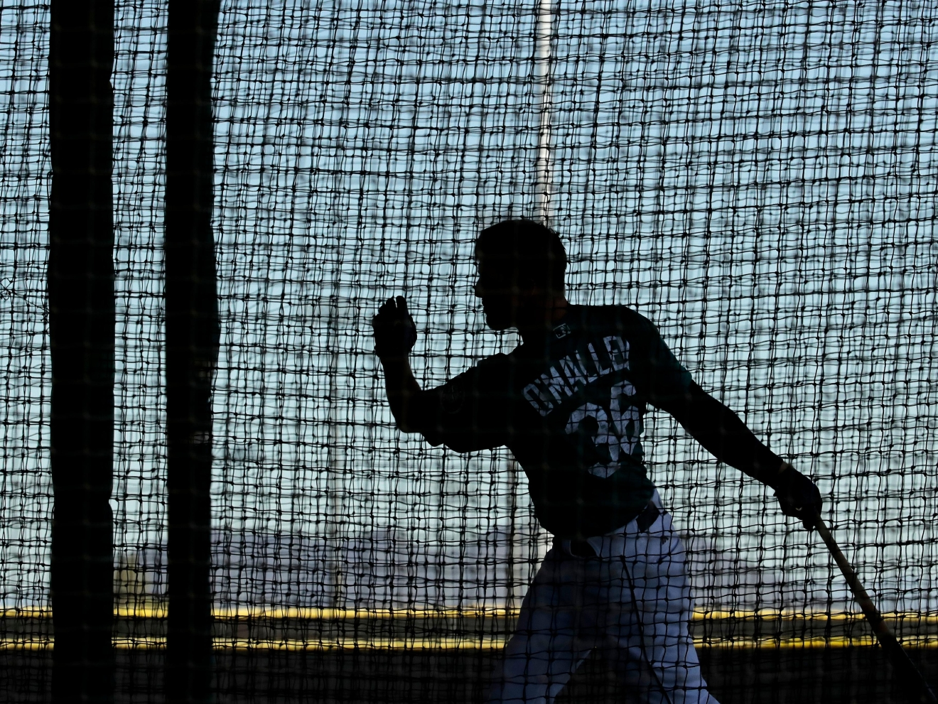 Seattle Mariners' Shawn O'Malley practices in a batting cage during spring training baseball practice, Tuesday, Feb. 21, 2017, in Peoria, Ariz. (AP Photo/Charlie Riedel)