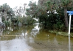 Flooding 3 - Edisto PD.png