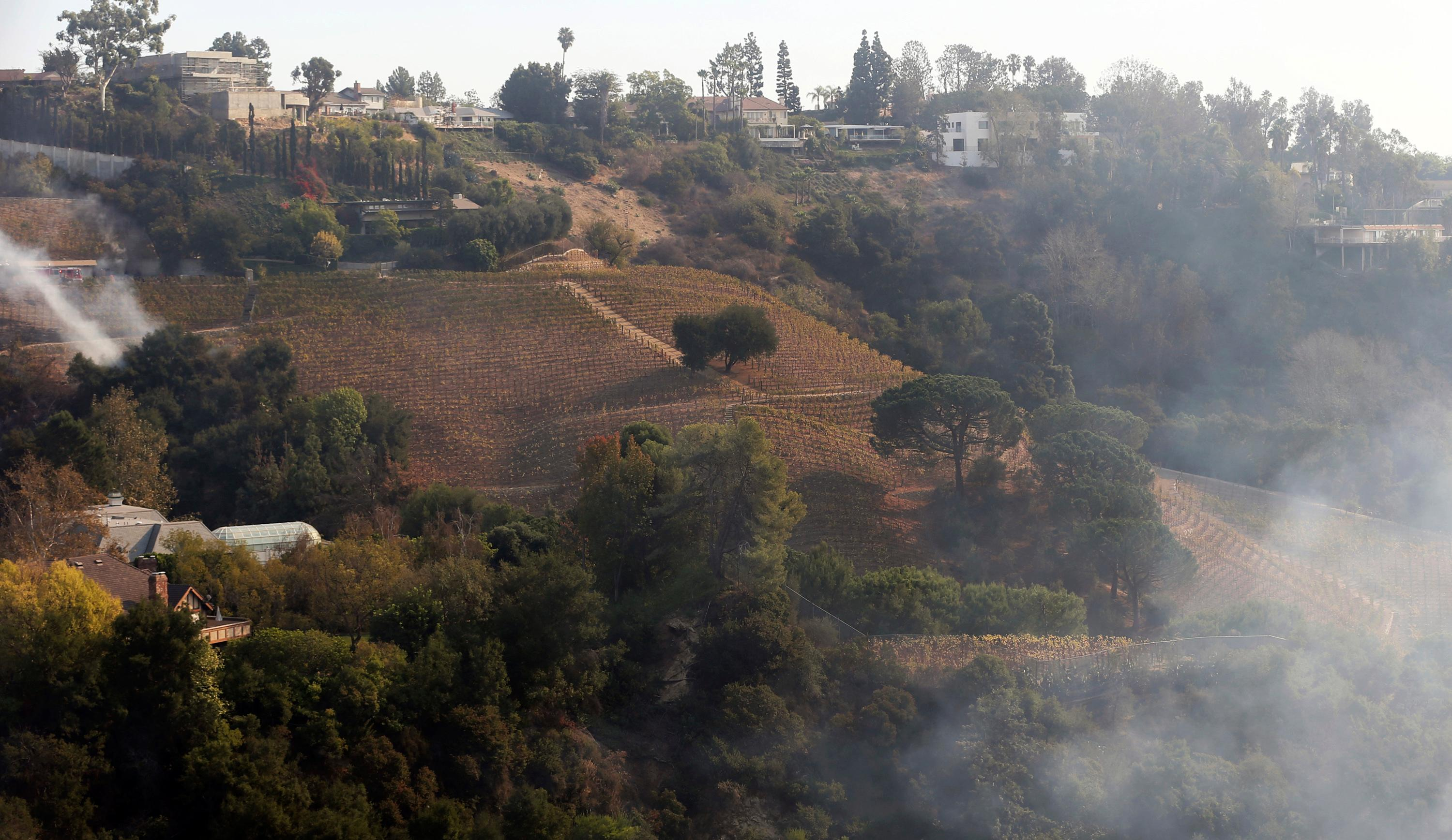 In this Dec. 6, 2017 photo, wildfire burns a portion of media mogul Rupert Murdoch's 16-acre (6.5-hectare) Moraga Vineyards estate, where about 7 acres (2.8 hectares) of vines appeared to have been damaged, a spokeswoman said.  (AP Photo/Reed Saxon)