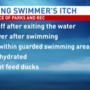 Swimmer's itch raising rashes