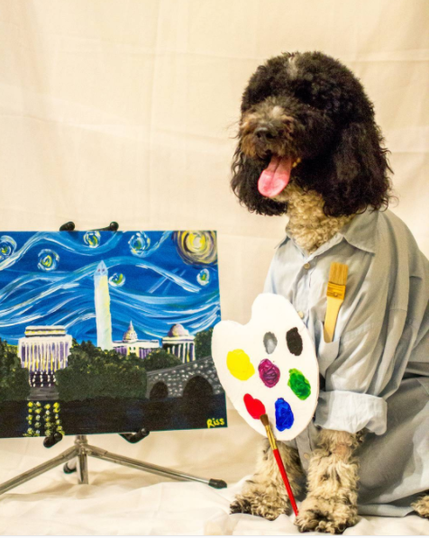 IMAGE: IG user @teddy4president / POST:{ }When you're a DC pup, your happy trees are monumental. Thank you for tuning in to the Howloween edition of the Joy of Painting with Teddy Ross!