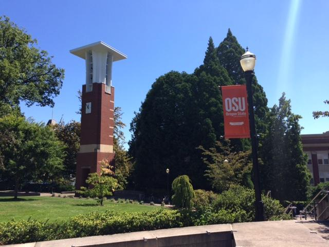 Oregon State University says it is increasing its efforts to make college more affordable for its students, particularly through the use of free, open access, online textbooks and other essential course materials. (SBG)