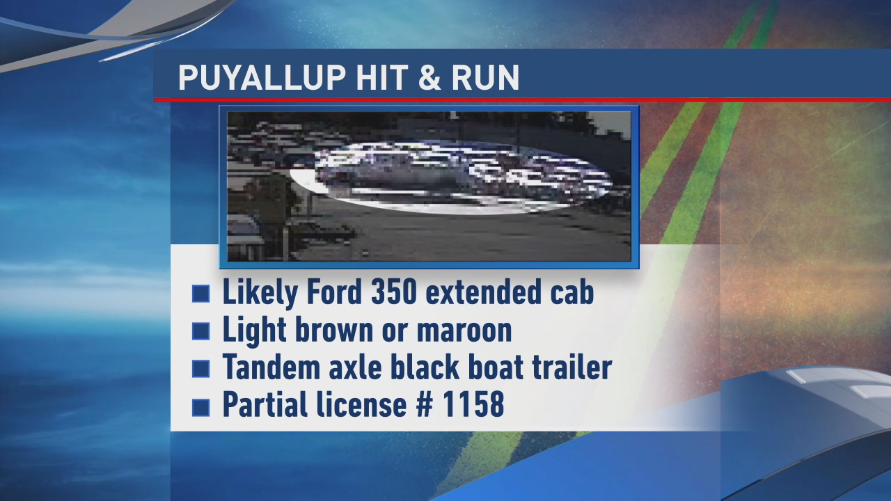 Description of suspected vehicle.