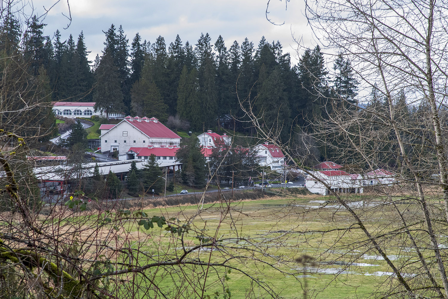 Tucked away in the lush hills of Snoqualmie Valley, E.A. purchased just under 400 acres of farmland knowing it would soon become connected to the railroad. (Rachael Jones / Seattle Refined)