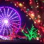 Austin, Buda Trail of Lights events canceled Saturday due to weather
