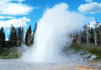 Yellowstone gesyer.jpg