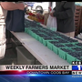 Sunny weather brings large crowd to Coos Bay Farmers Market