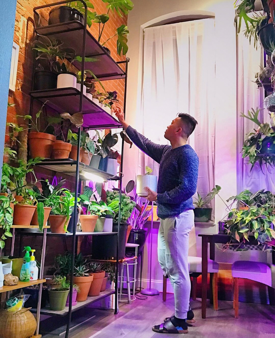 "Ae Vergonia (IG: @theplantdaddycincy) from Liberty Hill / ""What I loved about my room is it reminds me of home where I grew up. I'm originally from Santa Cruz, Manila, Philippines and my grandma and I filled our garage with different species of plants. Also there's a lot of desert and tropical plants there. I started collecting plants here in Cincinnati two years ago. My collection kept on growing and I just loved collecting plants most especially the rare ones and inspire others. "" / Image courtesy of Ae Vergonia // Published: 6.13.20"