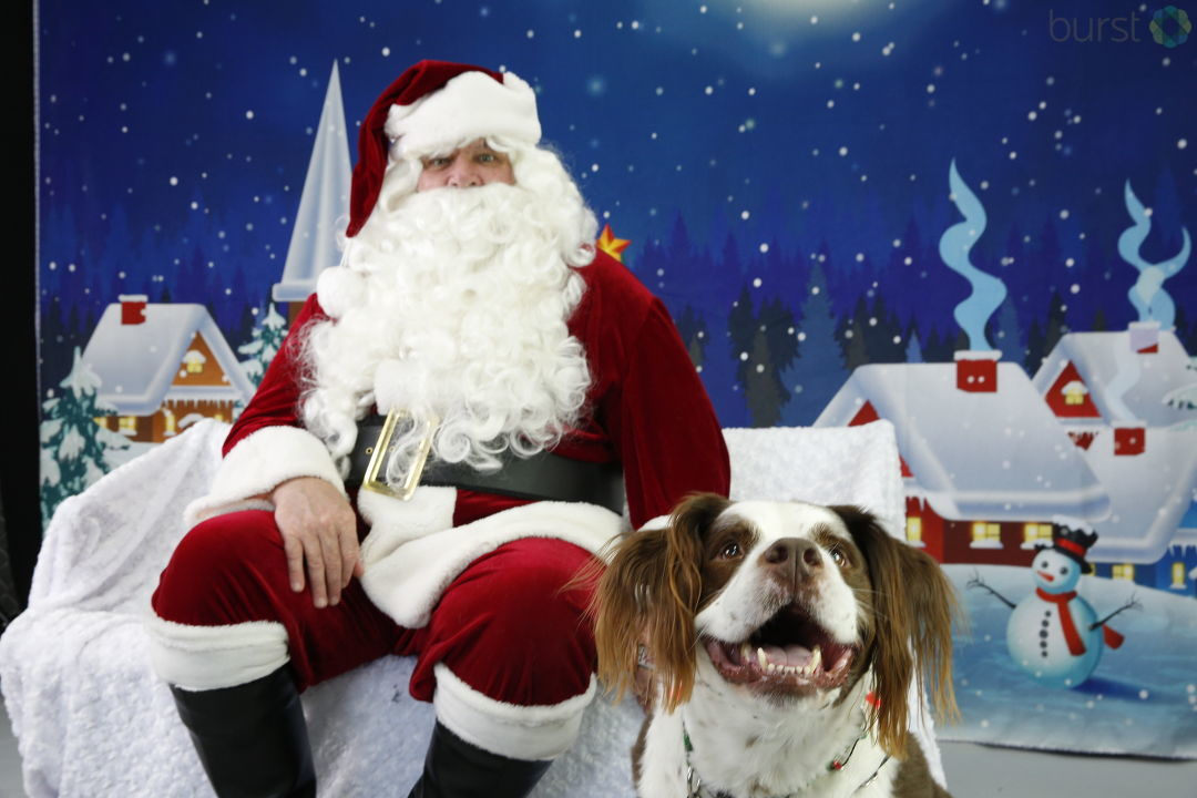 Awww! Pets with Santa! Send us your own photos at Burst.com/KATU!