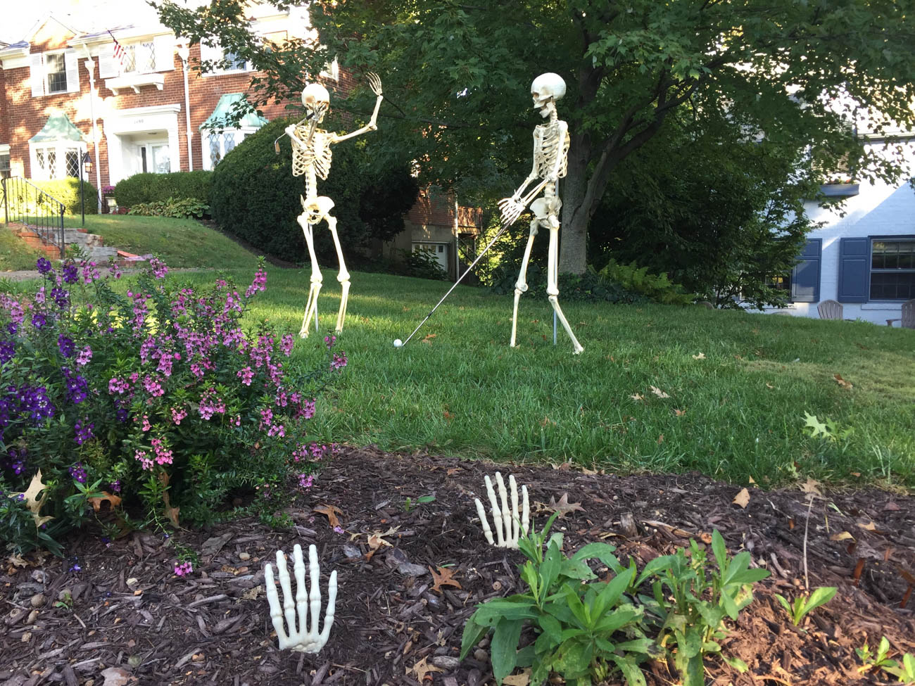 "To celebrate the Halloween season, a very creative couple in Park Hills poses a pair of skeletons in their yard in a variety of positions. From sunbathing to yoga to dancing, these skeletons (""Jack and Diane"") have a full schedule every day. Mark and Christy Walker are fairly new to the Cincinnati area and brought this idea with them all the way from Indianapolis. / Image courtesy of Mark & Christy Walker // Published: 10.31.19"