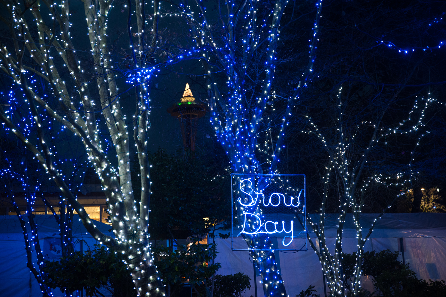 Holiday cheer, and NO worries about traffic or the city shutting down? Now THAT'S our kind of Snow Day! And it's happening nightly from Dec. 6 through Jan. 20 in Denny Park, South Lake Union. We stopped by a little preview of what patrons can expect from the immersive light installation, complete with 300,000 lights, displayed the park this holiday season. And guys - it's good. More info{ }online. (Image: Elizabeth Crook / Seattle Refined){ }