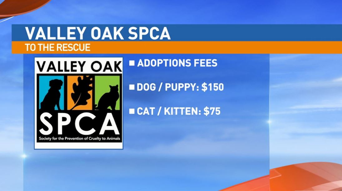 Valley Oak SPCA adoption fees