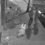 New Orleans police hunt suspects in brutal attack of tourists caught on camera