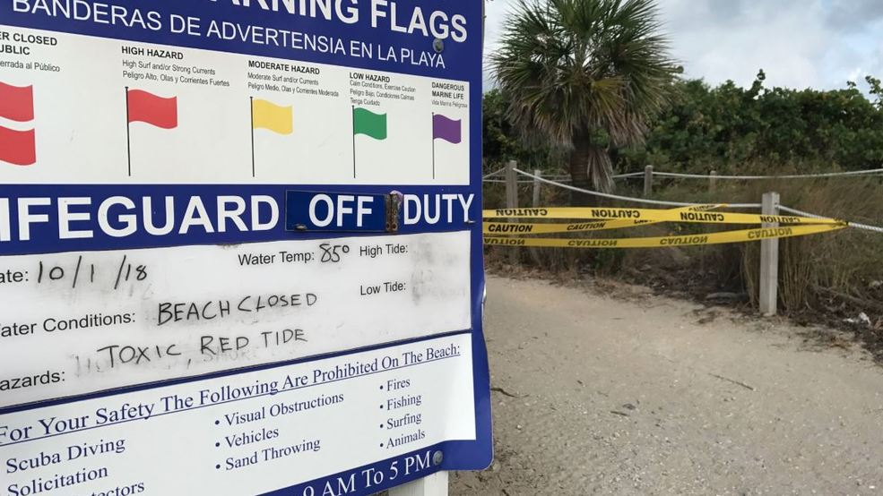 Red Tide Has Tourists And Beachfront Restaurants Feeling Blue Wpec