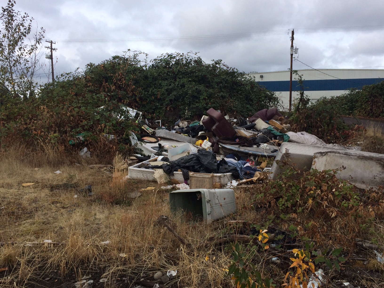 Who dumped all this trash in Springfield? And whose job is it to clean it up? Follow Ellen Meny as she digs into concerns from Springfield residents about a trash heap east of 35th Street, south of the railroad tracks. (SBG)