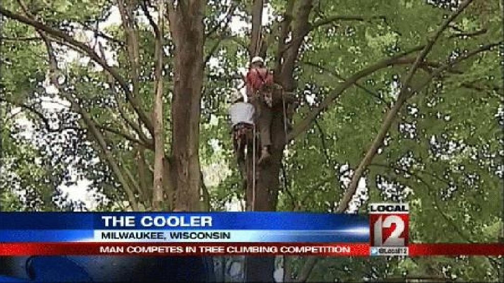 The Cooler: Tree climbing competition | WKRC