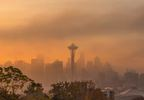 fog_seattle.jpg