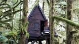 Man who kept child porn 'fairy house' in forest gets jail time
