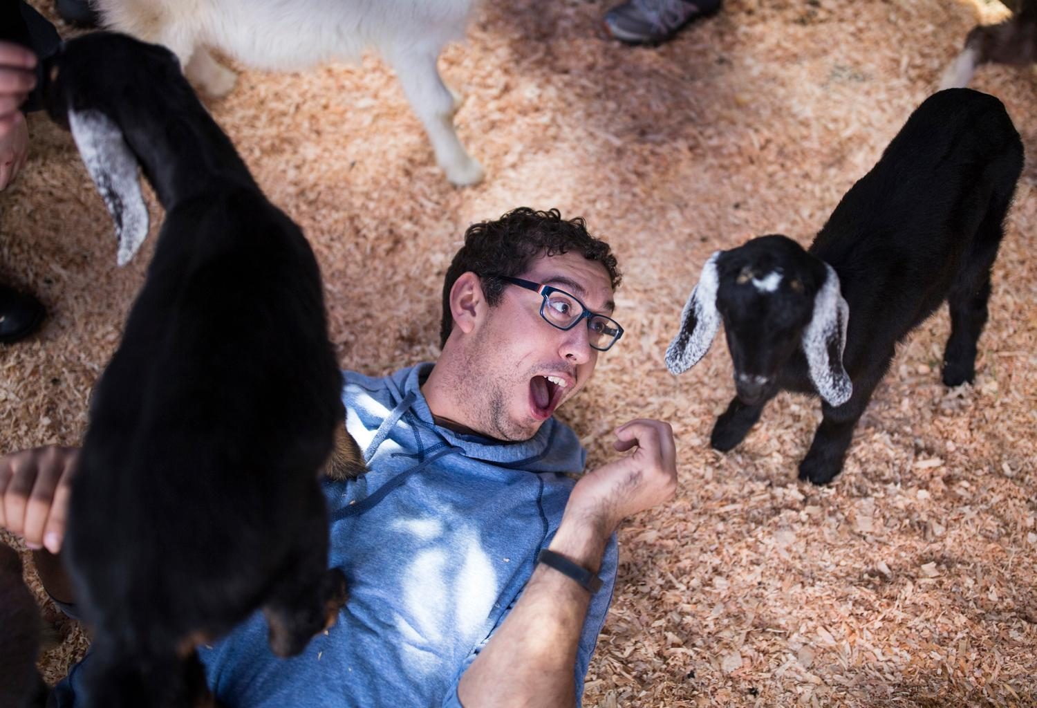 Attendees sip locally craft beer and pet baby rescue goats at the second annual Baby Goats and Brews fundraiser at Reuben's Brews in Ballard. $1 from every beer, growler, and flight sold goes to Puget Sound Goat Rescue. (Sy Bean / Seattle Refined)