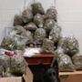 Report: Elderly couple tells officials 60 pounds of pot was for holiday presents