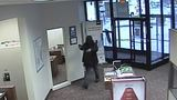 Bank robbery reported in Charleston