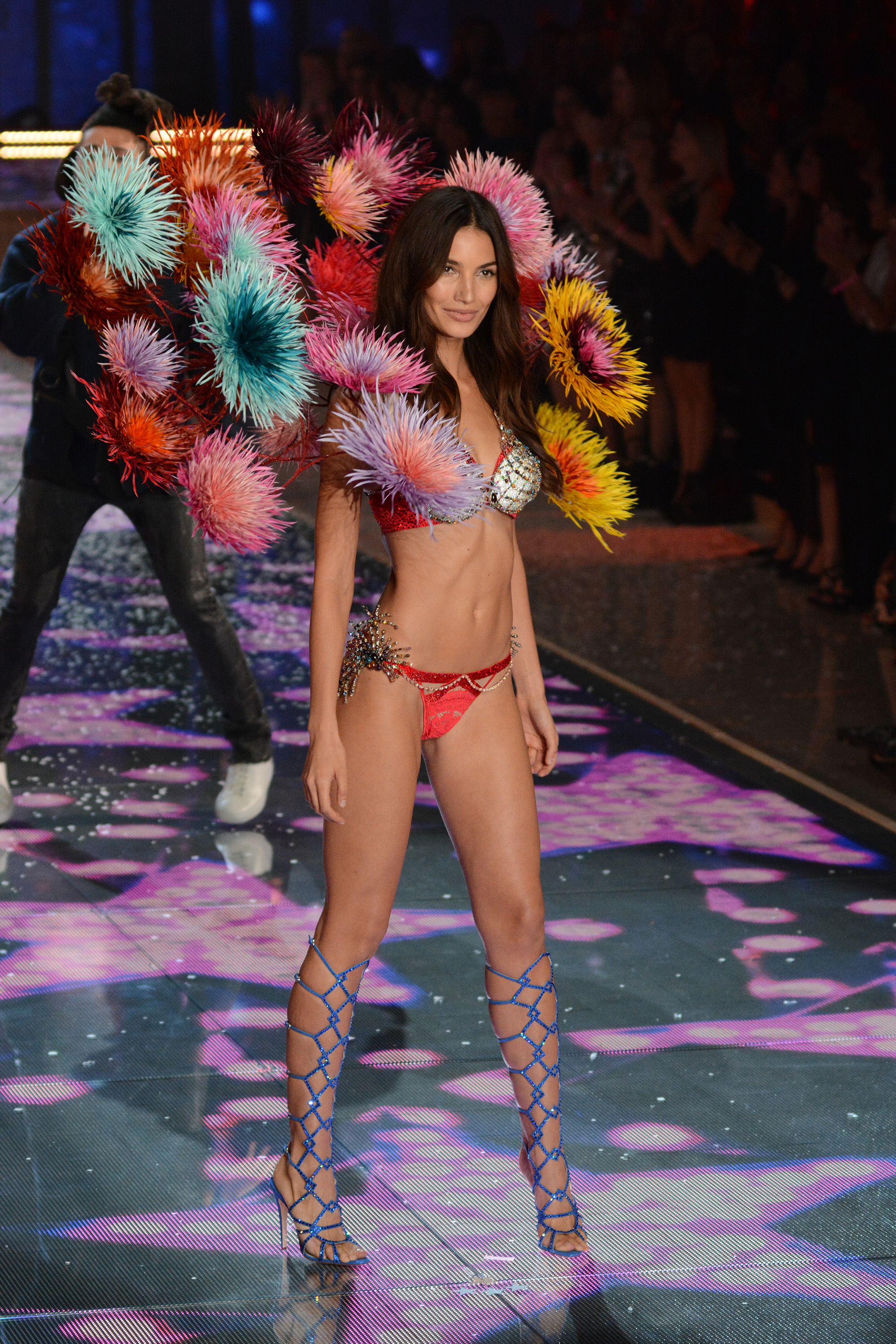 Lily Aldridge at the 2015 Victoria's Secret Fashion Show ( Ivan Nikolov/WENN.com)