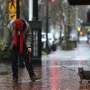 Icy streets start thawing, expect easier PM commute as temperature rises