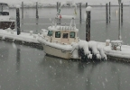 Craig Zolezzi photo of snow in Winchester Bay.jpg