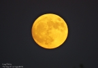 Supermoon (Photo by, Greg Pletzke).jpg