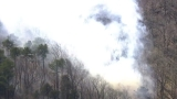 Brush fire occurs in wooded area in Maryland
