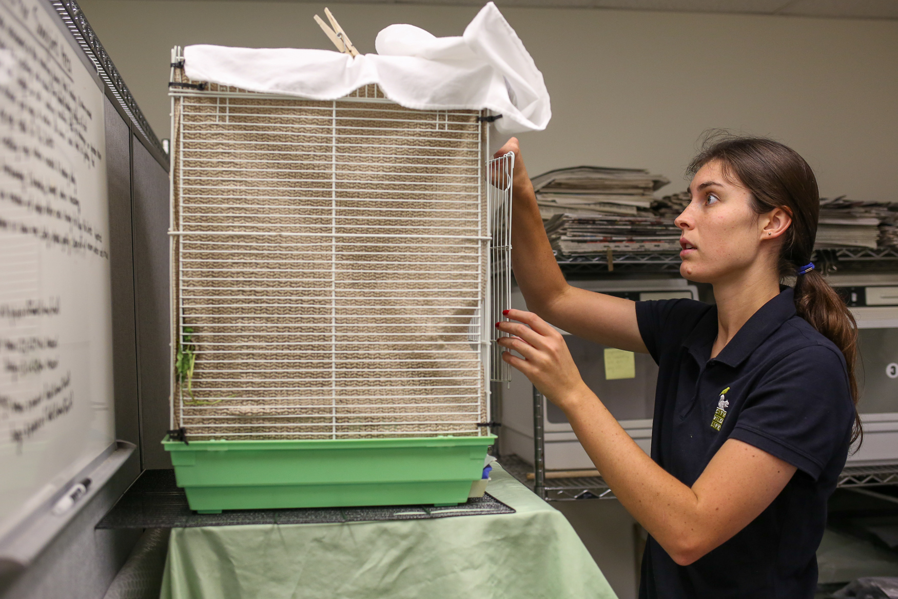Animal care manager Charlotte Lambert checks on a bird.{ }(Amanda Andrade-Rhoade/DC Refined)