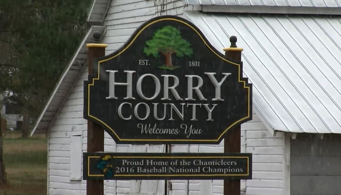 Snow at the Horry and Marion county line (WPDE)<p></p>