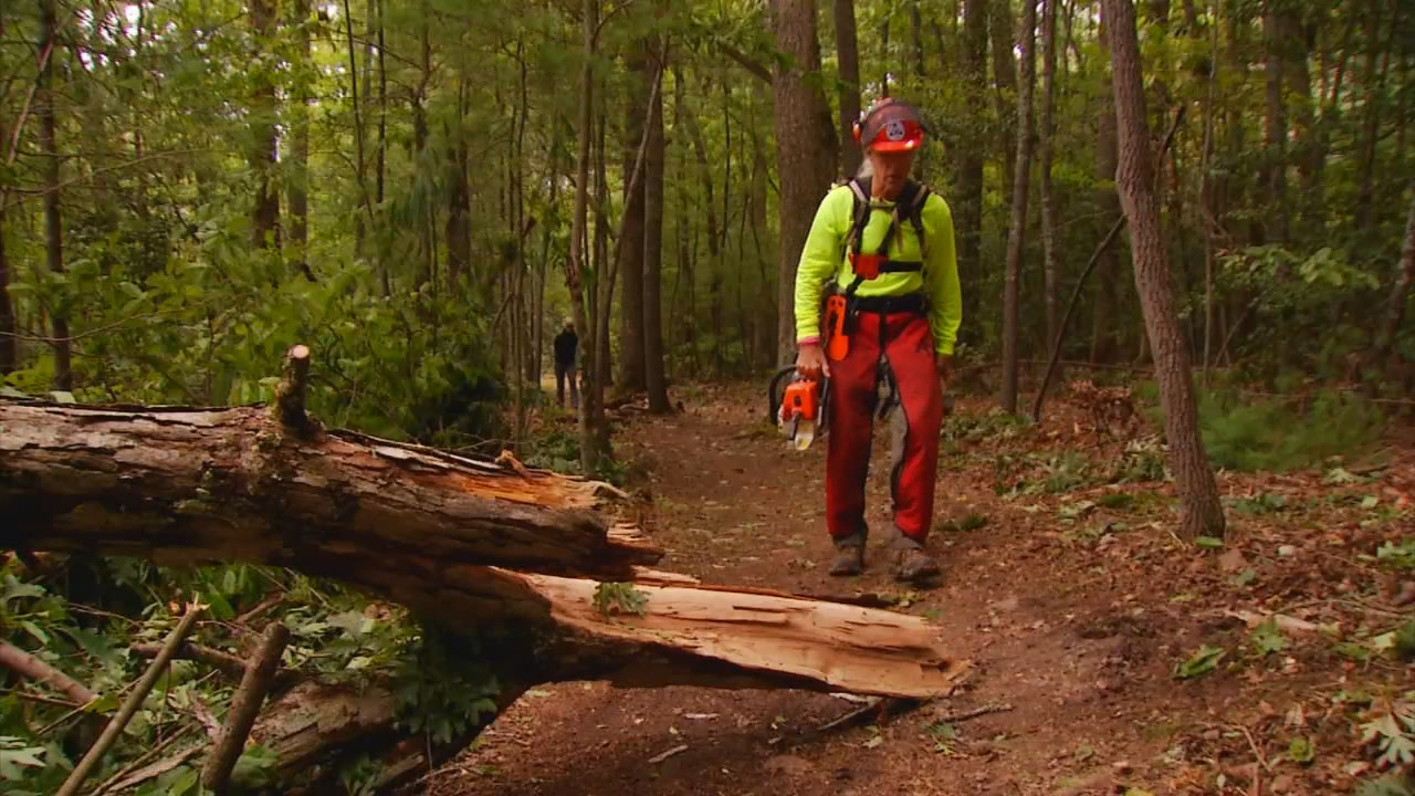 He is a volunteer, helping to maintain hiking trails with a chainsaw.