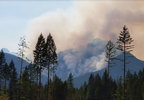 180809_pio_maple_fire_04_1024.jpg